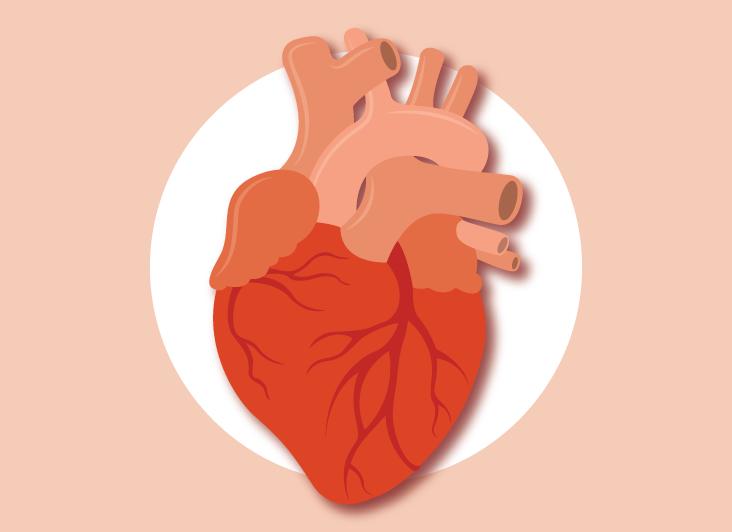 Опасная связь между апноэ во сне и сердечными заболеваниями